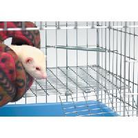 Accessoire De Cage - Abri Petit Animal Ressort angle pour cage furet