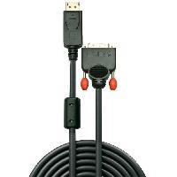Adaptateur Audio - Video LINDY Câble DisplayPort vers DVI - 1m