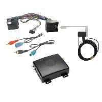 Adaptateur connectivite Autoradio Interface AutoDAB ADPE1 pour Peugeot ADNAuto