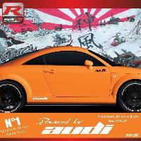 Adhesifs Auto Par Marque 00CP B - 2 stickers bas de caisse Powered by Audi - Blanc - pour TT MK1 Run-R Stickers