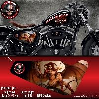Adhesifs & Stickers Stickers Harley Davidson Sportster SWEET DEMON pour Forty-eight Seventy-Two Iron 883 Superlow 1200 Custom - Run-R Stickers