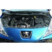 Adm Peugeot Boite a Air Carbone Dynamique CDA compatible avec Peugeot 106 1.4 Sport