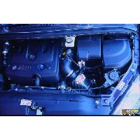 Adm Peugeot Boite a Air Carbone Dynamique CDA compatible avec Peugeot 307 2.0 HDI 90 Cv
