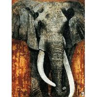 Affiche Affiche papier - Elephant - Arietti - 60x80 cm - MID