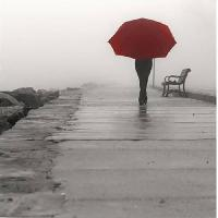 Affiche Affiche papier - Red Umbrella I - 30x30 cm