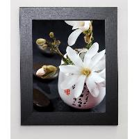 Affiche BEYLER CATHERINE Image encadree Composition Zen - Magnolia Stellata 1 31x37 cm Multicolore - Generique