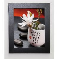 Affiche BEYLER CATHERINE Image encadree Composition Zen - Magnolia Stellata 2 - 31x37 cm Multicolore - Generique