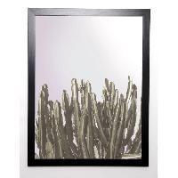 Affiche BRAUN STUDIO Affiche encadree Cactus Cierges 57x77 cm