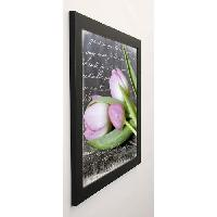 Affiche HAASE Image encadree Poetry Tulips 57x57 cm Rose
