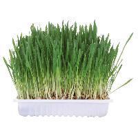 Alimentation - Croquettes Bac d'herbe aux petits animaux - bol env. 100g