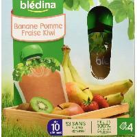 Alimentation Infantile BLEDINA - Gourdes bananes pommes fraises kiwis 4x90g