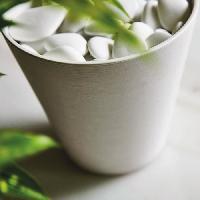 Amenagement Exterieur - Du Jardin DEROMA Sachet de galets de surfacage piccoli Save R bianco - Coloris blanc - 25cm