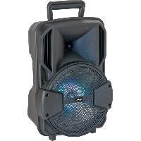 Amplificateur - Enceintes PARTY LIGHT et SOUND 15-6135PLS Enceinte active 8 - LED. Bluetooth. USB Aucune