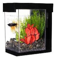 Aquarium Aquarium Ez Care Style pour betta - 3.78 L