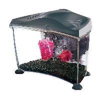 Aquarium Kit aquarium Graphite pour betta - 6.7 L