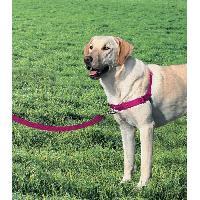 Attache - Sellerie EASY WALK Harnais L - Framboise - Pour chien