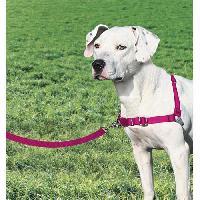 Attache - Sellerie EASY WALK Harnais M - Framboise - Pour chien