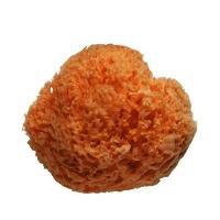 Bain Bebe Eponge naturelle traitee - Bebe - D 8 cm