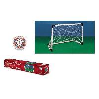 Balle - Boule - Ballon COUPE DU MONDE FIFA 2018 - Kit Mini Cage But Foot + Ballon - Mondo