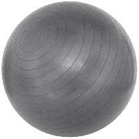 Ballon Suisse - Gym Ball - Swiss Ball Ballon de gym 75 cm - Gris