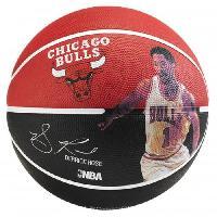 Basket-ball SPALDING Ballon Basket-ball NBA Player DERRICK ROSE BKT