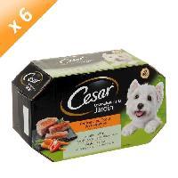 Boite - Patee - Nourriture Humide - Molle CESAR Barquettes en terrine coeur de légumes - 4 variétés - Pour chien adulte - 4 x 150 g (x6)