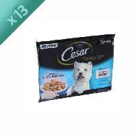 Boite - Patee - Nourriture Humide - Molle CESAR Sachets fraîcheur en gelée - 2 variétés - Pour chien senior - 4 x 100 g (x13)