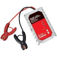 Booster De Batterie - Station De Demarrage MINI JUMPSTARTER Chargeur