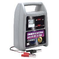Chargeur De Batterie CHARGEUR BATTERIE 6V 12V-8A