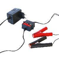 Chargeur De Batterie Chargeur automatique 12v