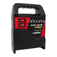 Chargeur De Batterie Chargeur de batterie 8A TVGS