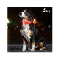 Collier MY PET Collier LED - L 42-45 cm - Pour chiens Mypet Ez