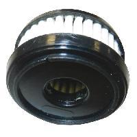 Combustible GASLOW Cartouche de remplacement pour filtre a gaz