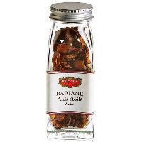 Condiments - Sauces - Aides Culinaires ERIC BUR Badiane Etoile 8g