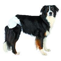 Culotte Hygienique - Couche - Incontinence - Protection Menstruelle - Chaleurs TRIXIE Couches pour chiens taille M