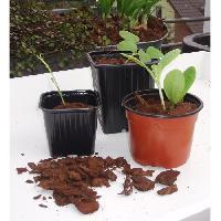 Culture Indoor Lot de 20 pots bouturage polystyrene7x7x6cm