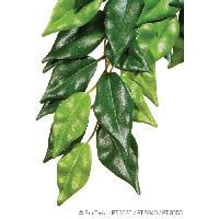 Decoration De L'habitat Plante Ficus 25x40cm - Exo Terra