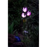 Decoration Lumineuse Tulipe a energie solaire - 9 Lm - H 85.5-75.5 x 18 x 13 cm