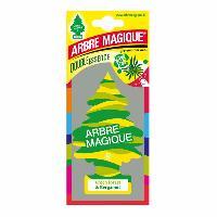 Desodorisant Auto - Parfum Auto Desodorisant GREEN FOREST et BERGAMOT - Arbre Magique
