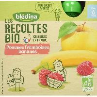 Dessert Fruite - Compote - Puree Fruit Bebe BLEDINA - Gourde pomme framboise banane BIO 4x90g