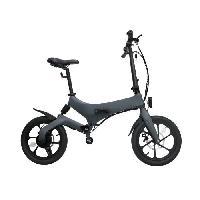 Draisienne Electrique IRIDER Draisienne / Trottinette Electrique - Larges roues de 16 - Gris - 250W - Pliable Aucune