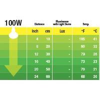 Eclairage EXO TERRA Ampoule nocturne - 100 W - Pour reptile ou amphibien