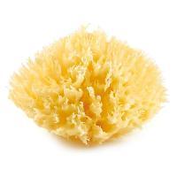 Eponge De Bain - Rincage Bebe Eponge de Mer Mediterranee Honeycomb Taille 10