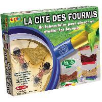 Experience Scientifique - Experience Physique-chimie La Cité Des Fourmis - Bsm