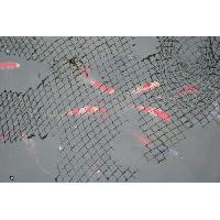 Filet - Grille  De Protection LAGUNA Filet protecteur pour bassin 4.5 x 6 m -15 x 20 pi- - Noir - Pour poisson