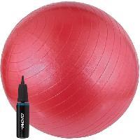 Fitness - Musculation AVENTO Swiss ball Avec Pompe - M - 65 cm - Rose