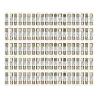 Fusibles pour auto AGU 100 Fusibles AGU verre dore 10A