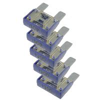 Fusibles pour auto ATO Maxi 5x Maxi Fusibles 100A 29mm MAXIVAL