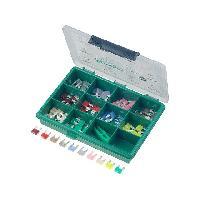 Fusibles pour auto ATO Mini Kit 100 Mini fusibles 23457.51015202530A ADNAuto