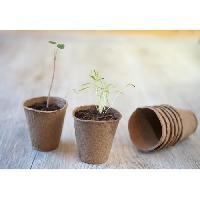 Godet De Culture - Pot De Tourbe Lot de 15 pots en tourbe ronds H8.5 x diam 8 cm - Nature